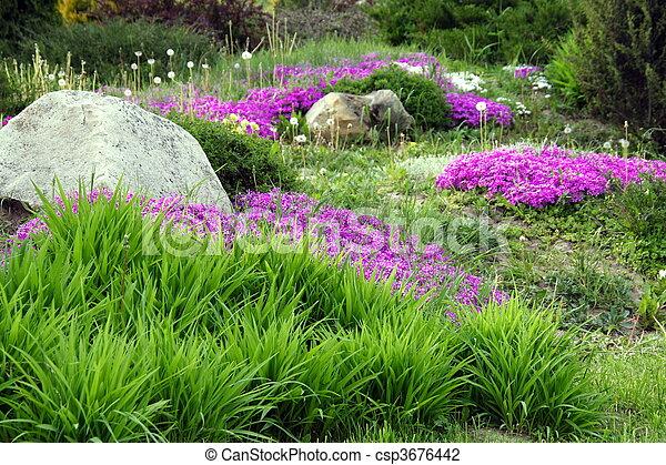 Blumen, Steinen, Design, Kleingarten, (5)   Csp3676442