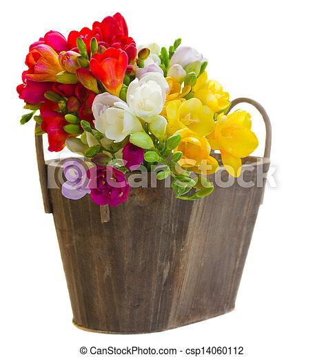 Ganz und zu Extrem Blumengebinde, hölzern, topf, blumen, freesien. Blumengebinde #EC_76