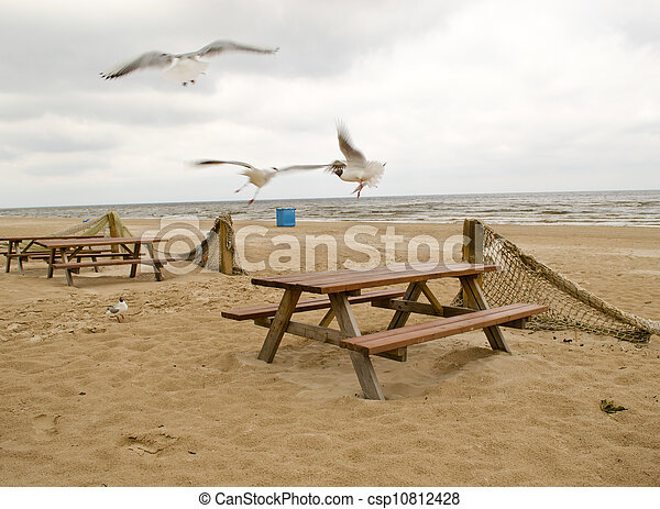 Blur seagull fly near wooden tables and fence net - csp10812428