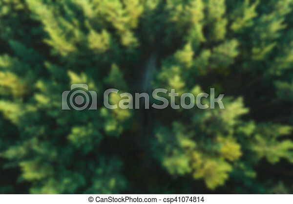 Blurred forest background. Aerial view. - csp41074814