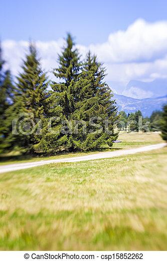 Blurred Mountain Pathway. Lensbaby Shot - csp15852262