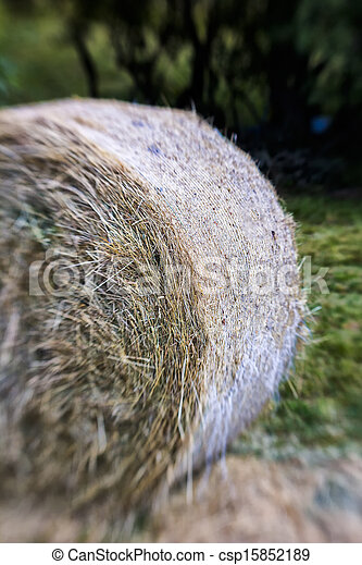 Blurred Mountain Sheaf. Lensbaby Shot - csp15852189