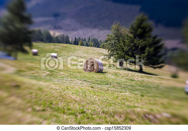 Blurred Mountain Sheaf. Lensbaby Shot - csp15852309