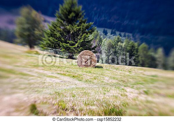 Blurred Mountain Sheaf. Lensbaby Shot - csp15852232