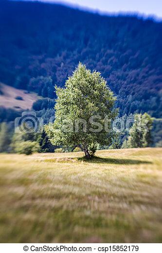 Blurred Mountain Tree. Lensbaby Shot - csp15852179