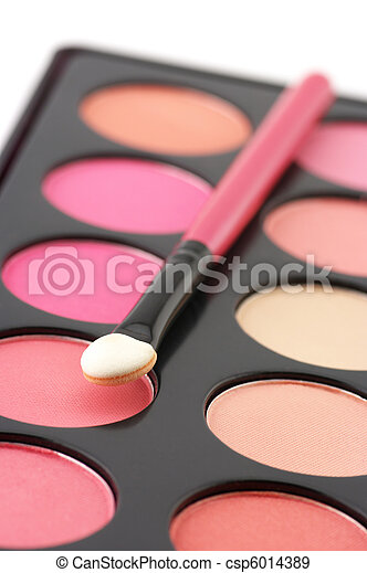 Blushes palette and applicator - csp6014389