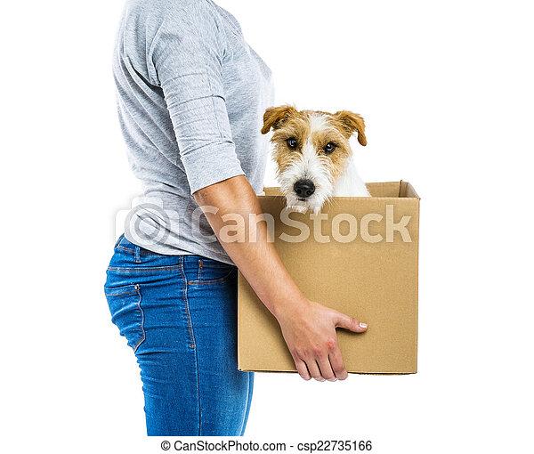boîte, femme, isolé, tenue, chien - csp22735166