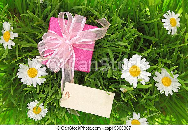 boîte, herbeux, etiquette don, fond, vide - csp19860307