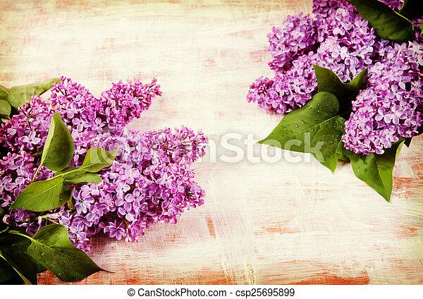 boards., stil, gammal, lila, årgång, hipster, retro, ver, blomningen - csp25695899