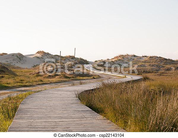 Boardwalk on the beach - csp22143104