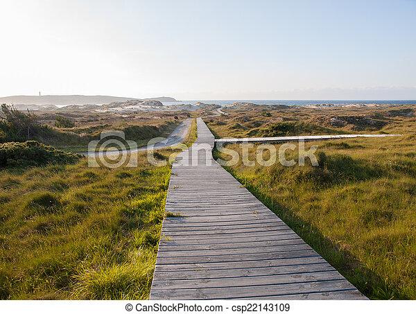 Boardwalk on the beach - csp22143109