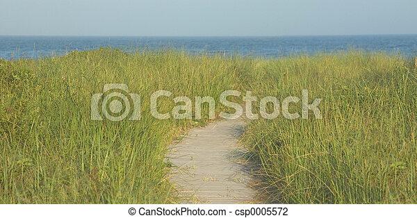 Boardwalk Panorama - csp0005572