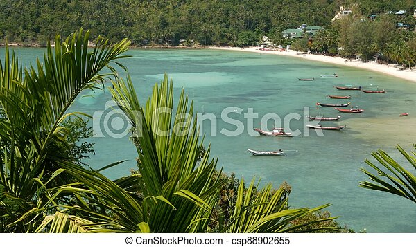 Boats near shore of island. Traditional colorful fishing vessels floating on calm blue water near white sand coast of tropical exotic paradise island. View through green palm leaves. Koh Phangan - csp88902655