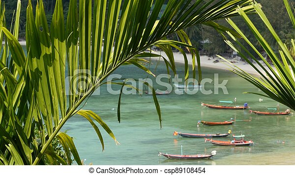 Boats near shore of island. Traditional colorful fishing vessels floating on calm blue water near white sand coast of tropical exotic paradise island. View through green palm leaves. Koh Phangan - csp89108454
