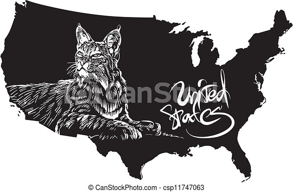 Bobcat And U S Outline Map Black And White Vector Ilration Lynx Rufus