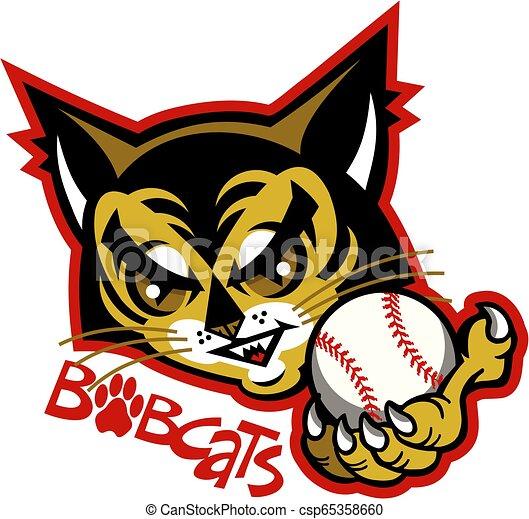 bobcats baseball - csp65358660