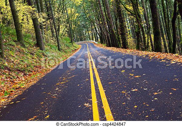 Caen rodando la montaña del bosque - csp4424847