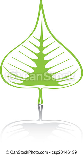 Bodhi (Sacred Fig) leaf Vector Illustration. - csp20146139