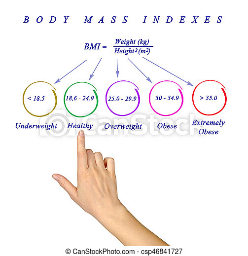 Body Max Index - csp46841727