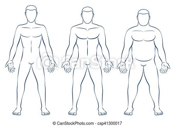 Male Body Types Art