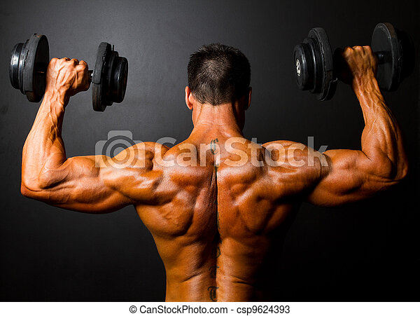 bodybuilder training with dumbbells  - csp9624393
