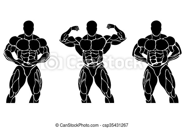 Bodybuilding and powerlifting - csp35431267