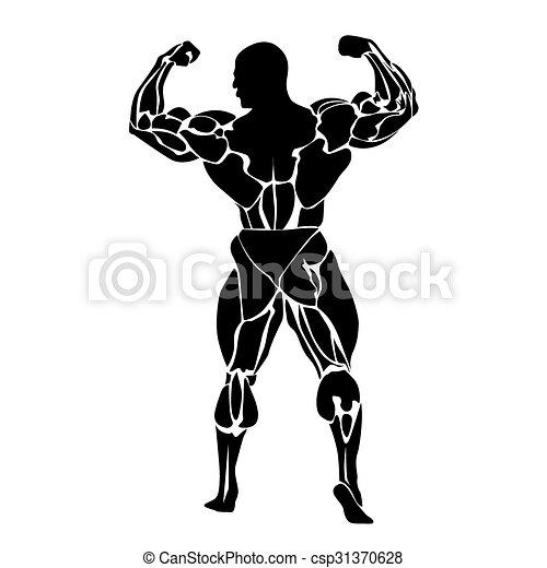 Bodybuilding - csp31370628