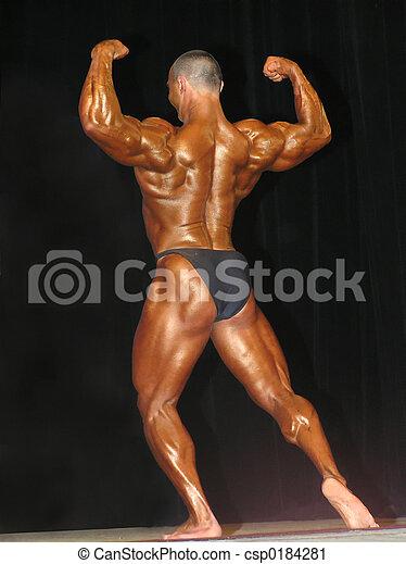 bodybuilding - csp0184281