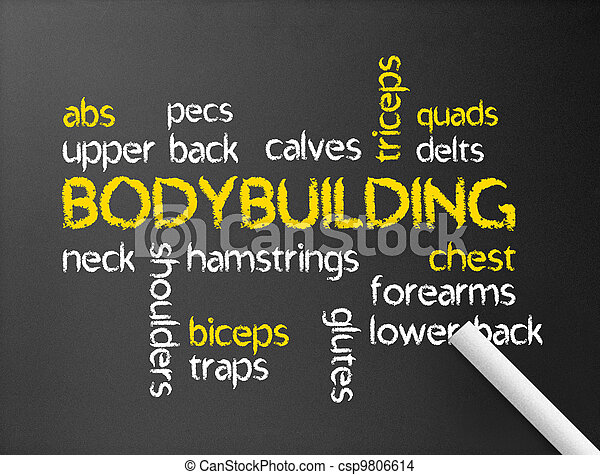 Bodybuilding - csp9806614