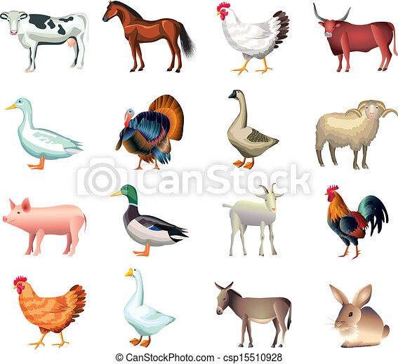 boerderij, set, dieren, vector - csp15510928