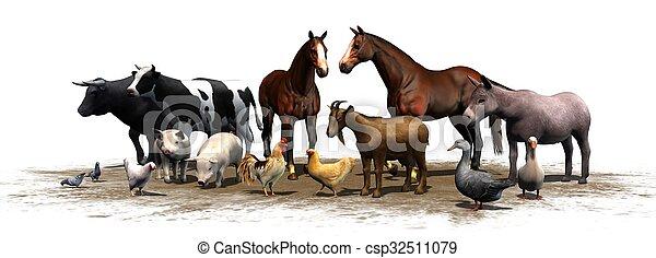 boerderijdieren - csp32511079