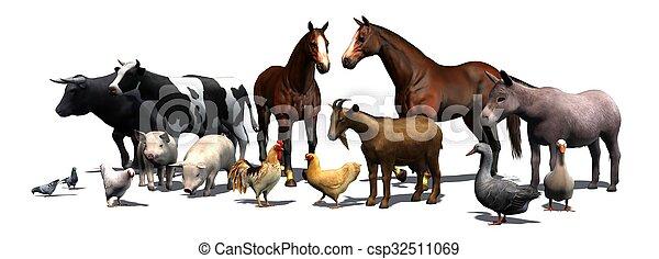 boerderijdieren - csp32511069