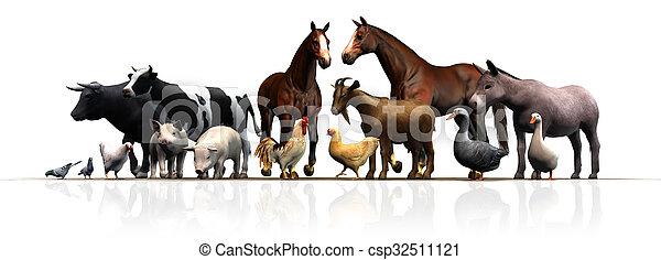 boerderijdieren - csp32511121