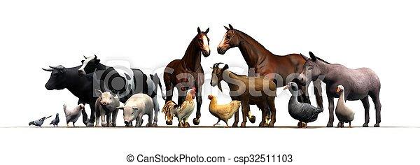 boerderijdieren - csp32511103