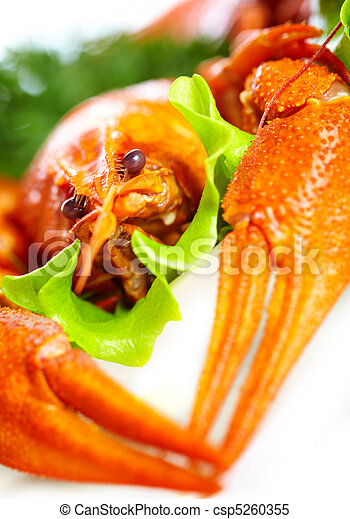Boiled crawfish on a white background - csp5260355