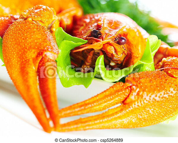 Boiled crawfish on a white background - csp5264889