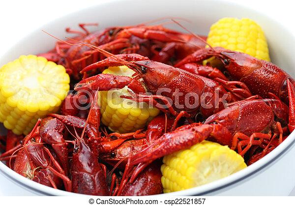 boiled crawfish - csp22521857