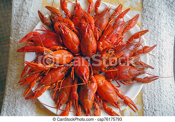 Boiled red crayfish on a plate - csp76175793