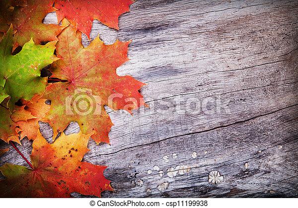 bois, feuilles, érable, surface - csp11199938