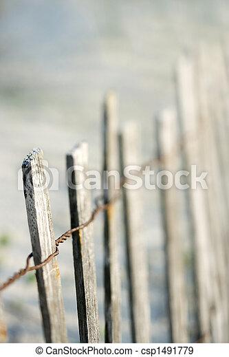 bois, plage., barrière - csp1491779