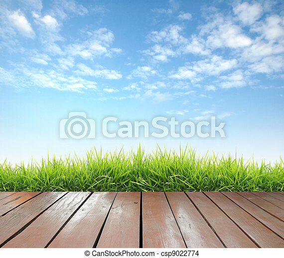 bois, printemps, vert, terrasse, frais, herbe - csp9022774