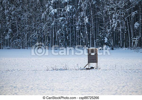 bojiště, sněžný, slepý, zima, honba - csp88725266
