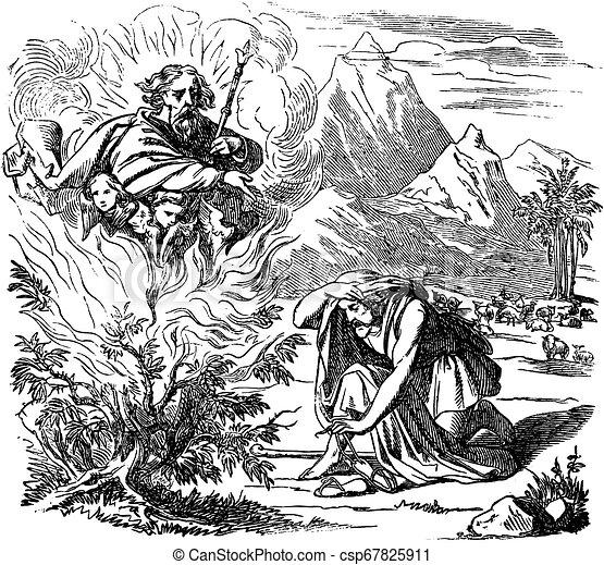 bokor, rajz, bibliai, égető, szüret, mózes, sztori - csp67825911