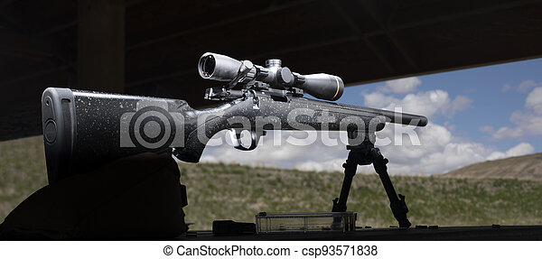 Bolt action rimfire rifle on a shooting bench - csp93571838