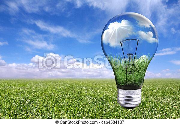 Bulb en paisaje natural - csp4584137