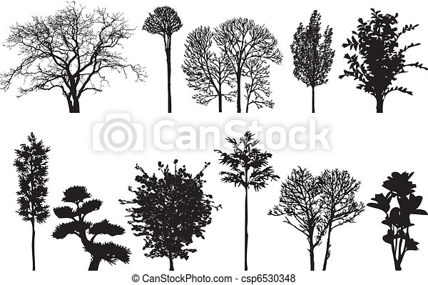 bomen - csp6530348