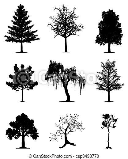bomen, verzameling - csp3433770
