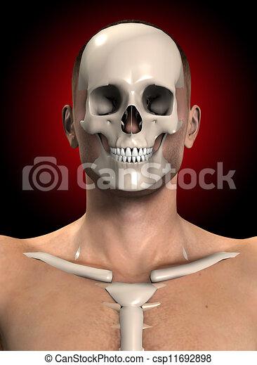 Bone Face - csp11692898