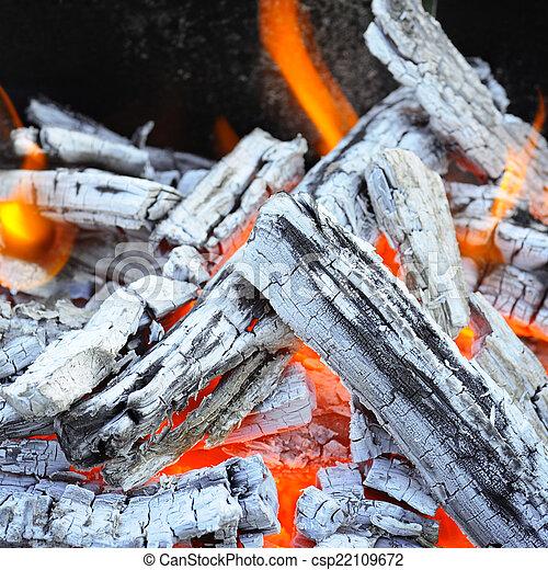 Bonfire Fire Wood Coal And Ash