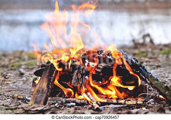 bonfire spring riverside c - csp70926457